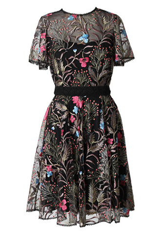 [ML Monique Lhuillier]<br>半袖フローラルレース ドレス(36)-ブラック/ゴールド